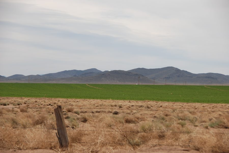 SOLD! –> 5 Acres in the Heart of the San Luis Valley