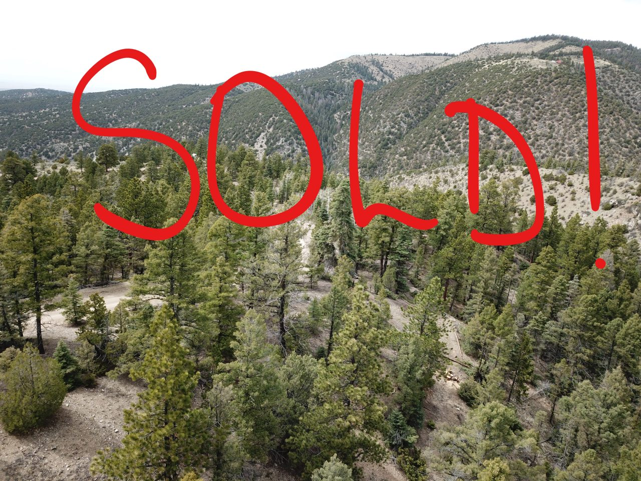 SOLD — 5.8 Ac CO Mountaintop Oasis
