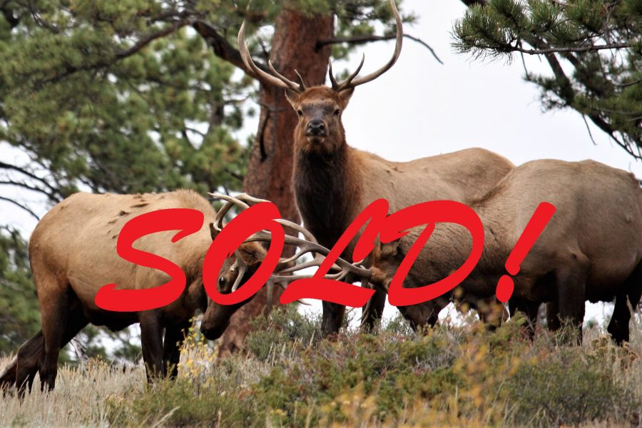 SOLD – 73+ CO Acres of Rolling Hills, Trees, Views, & Wildlife