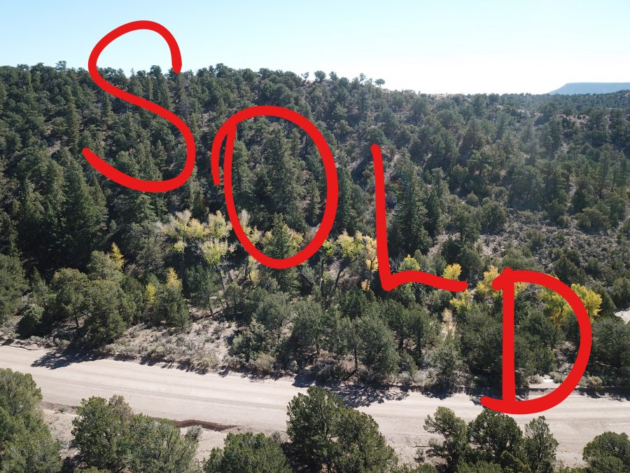 SOLD –> Homefront on Heritage – 5 CO Acres
