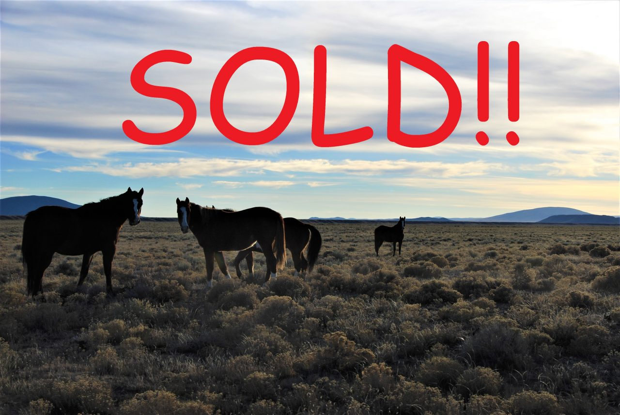SOLD – 5ac on Fleming Rd.