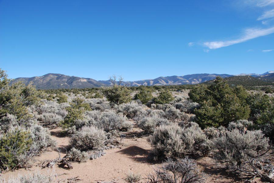 Your Mountain Range Retreat