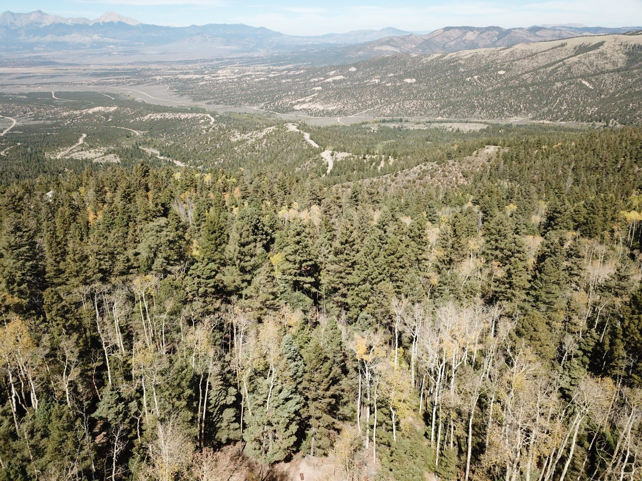 Just Listed — 5ac of Lush CO Mountains