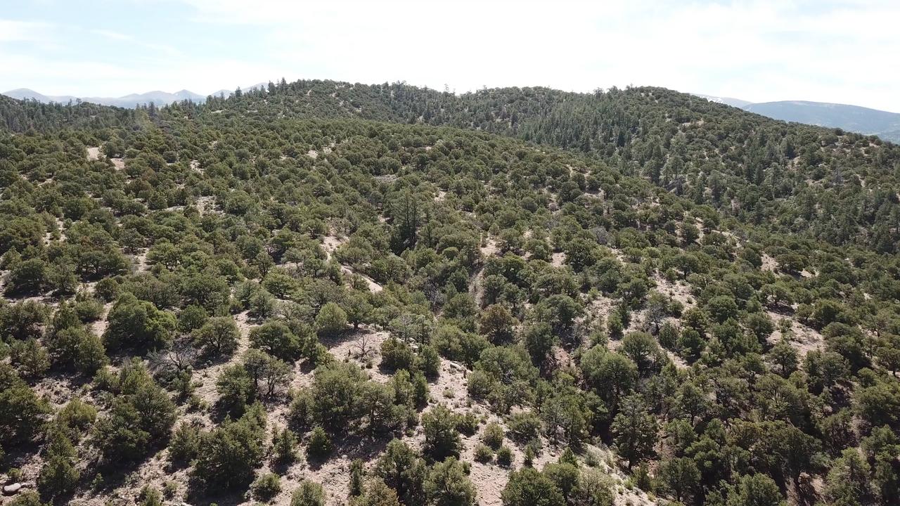 60 Big, Beautiful Colorado Acres