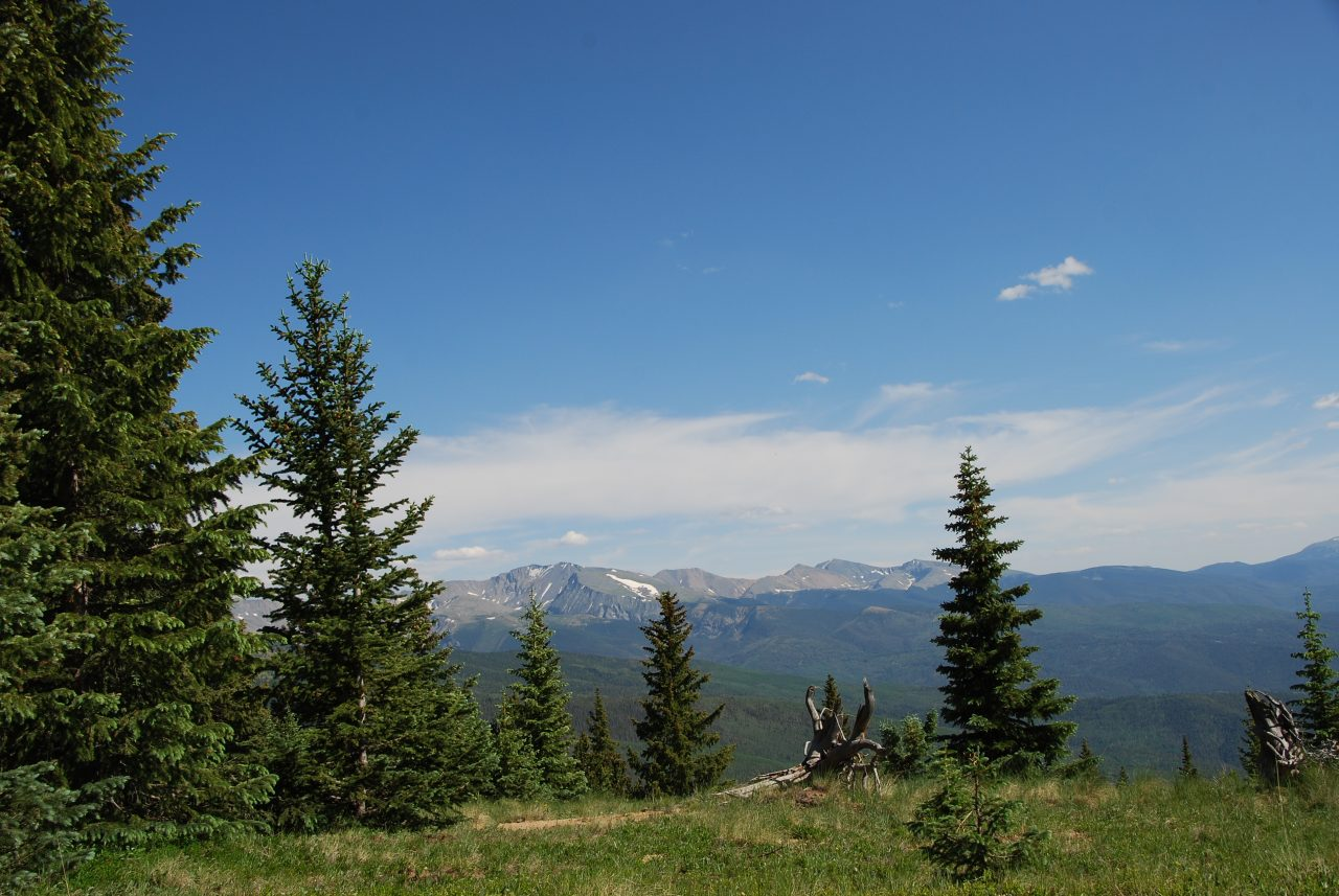 Mountaintop Perch
