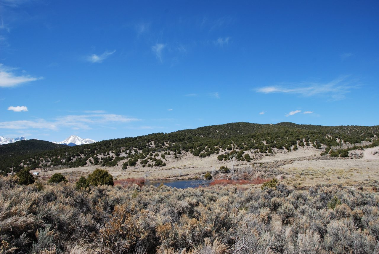 58.8 Big, Beautiful Colorado Acres