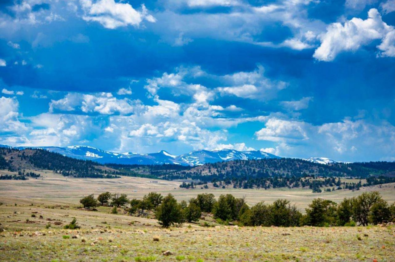 SOLD ->Don't Just Dream It…BE A LAND OWNER! 5 acres in Park County, CO